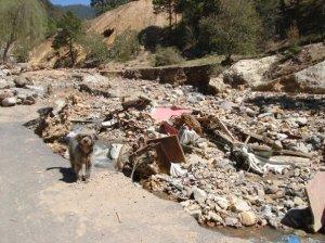 Mudslide in Central Mexico