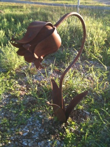 Memorial tulip
