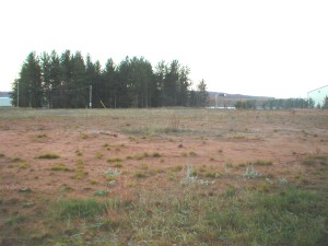Sand dunes changing to pine barrens