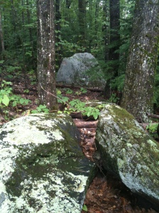 Grandfather boulder