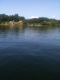 Saratoga Lake Pontoon (8)